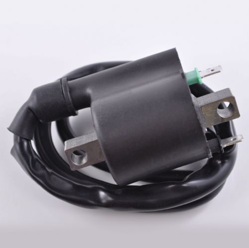 Kawasaki KVF 750 (2008-2014) Ignition Coil